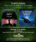 tiempo animal.cartel